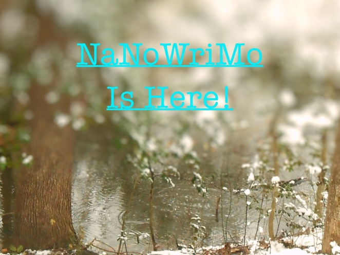 nanowrimo-is-here